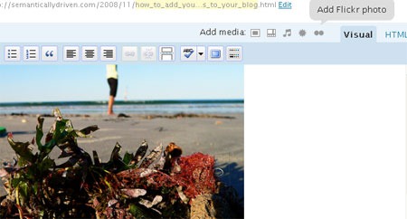 how to avoid wordpress reducing my photos size